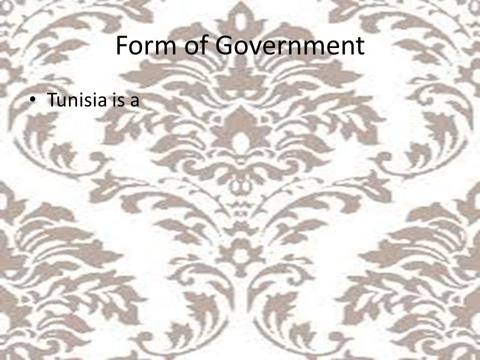 Form of Government Tunisia is a