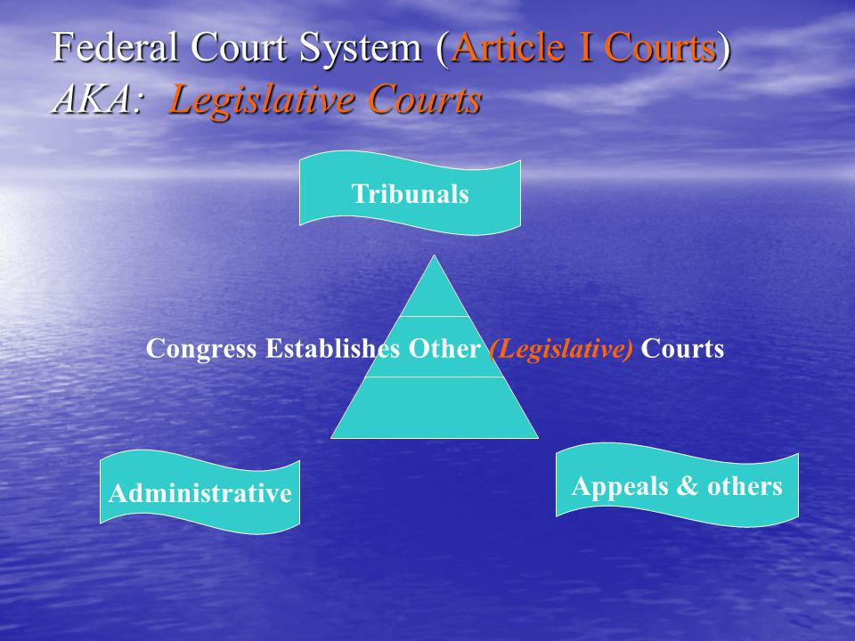 The Courts- KEY TERMS Majority opinion: The document announcing and usually explaining the Supreme Court's decision in a case.