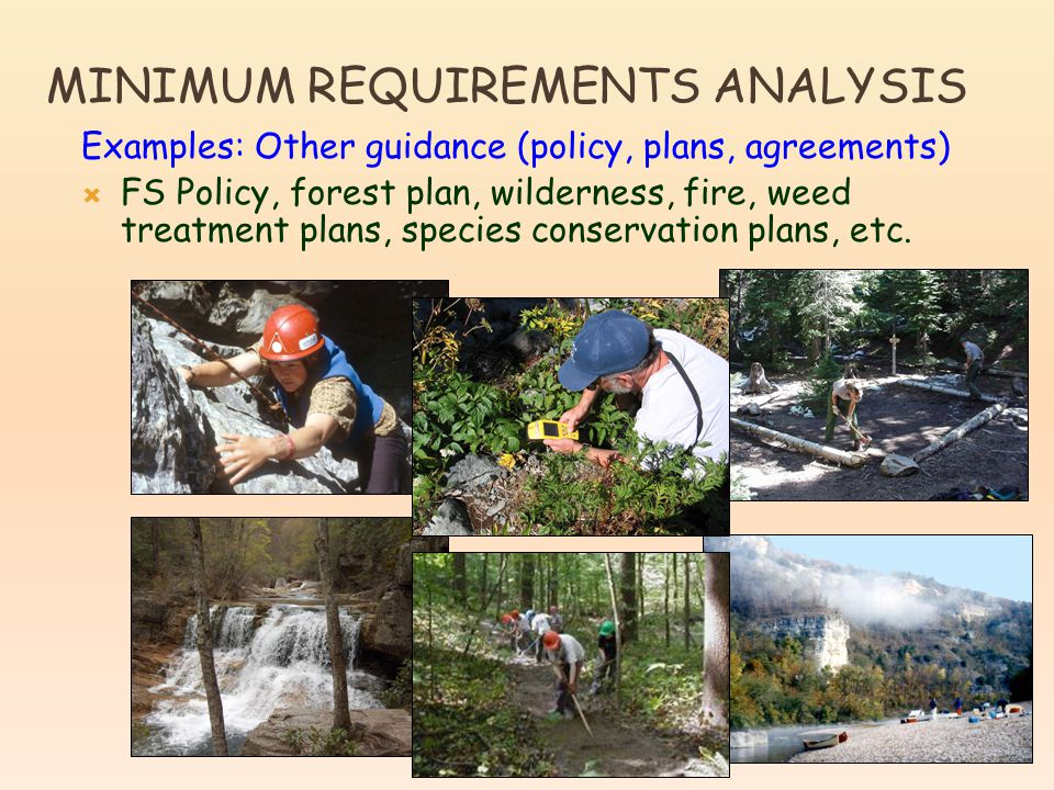 Examples: Other guidance (policy, plans, agreements)  FS Policy, forest plan, wilderness, fire, weed treatment plans, species conservation plans, etc.