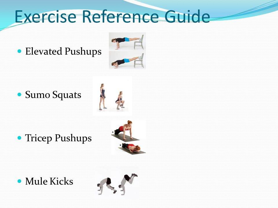 Exercise Reference Guide Elevated Pushups Sumo Squats Tricep Pushups Mule Kicks