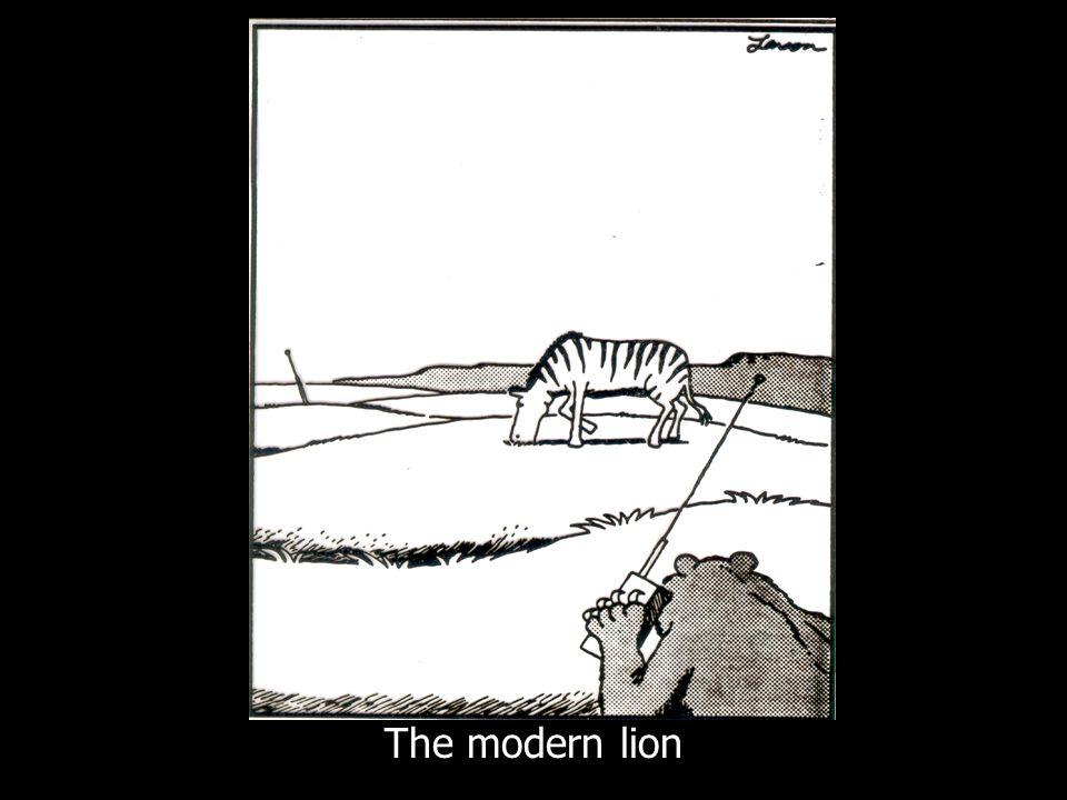 7 The modern lion