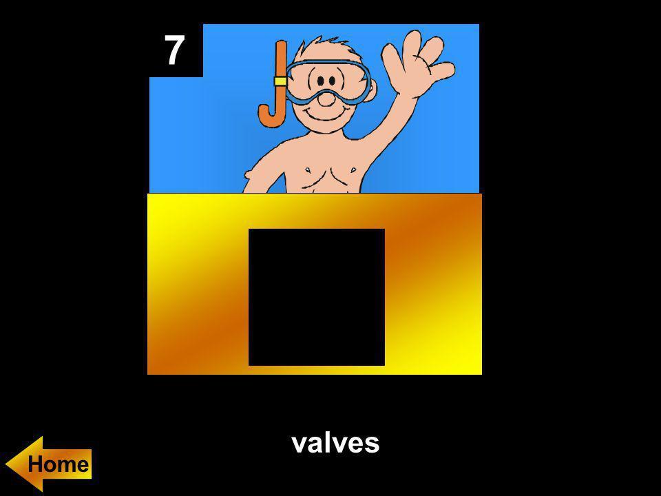 7 valves