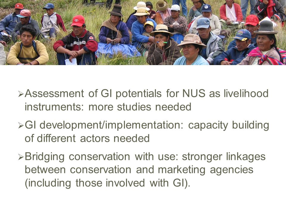  Assessment of GI potentials for NUS as livelihood instruments: more studies needed  GI development/implementation: capacity building of different actors needed  Bridging conservation with use: stronger linkages between conservation and marketing agencies (including those involved with GI).