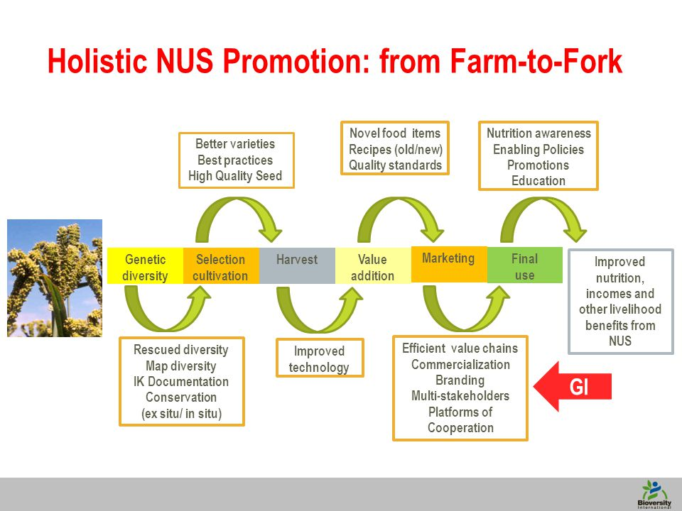 6 Improved nutrition, incomes and other livelihood benefits from NUS Holistic NUS Promotion: from Farm-to-Fork Genetic diversity Selection cultivation HarvestValue addition Marketing Final use Rescued diversity Map diversity IK Documentation Conservation (ex situ/ in situ) Better varieties Best practices High Quality Seed Improved technology Novel food items Recipes (old/new) Quality standards Efficient value chains Commercialization Branding Multi-stakeholders Platforms of Cooperation Nutrition awareness Enabling Policies Promotions Education GI