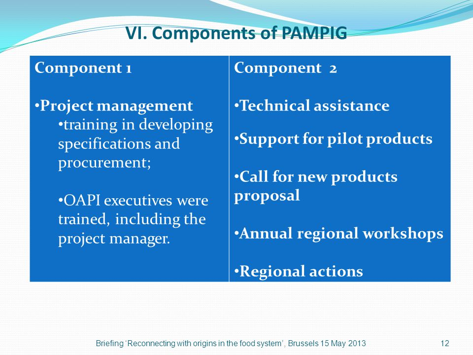 VI.Components of PAMPIG (continued) COMPONENT 2 1.