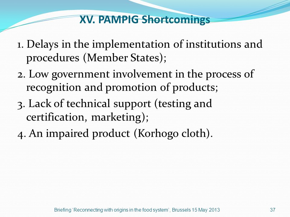 XV. PAMPIG Shortcomings 1.
