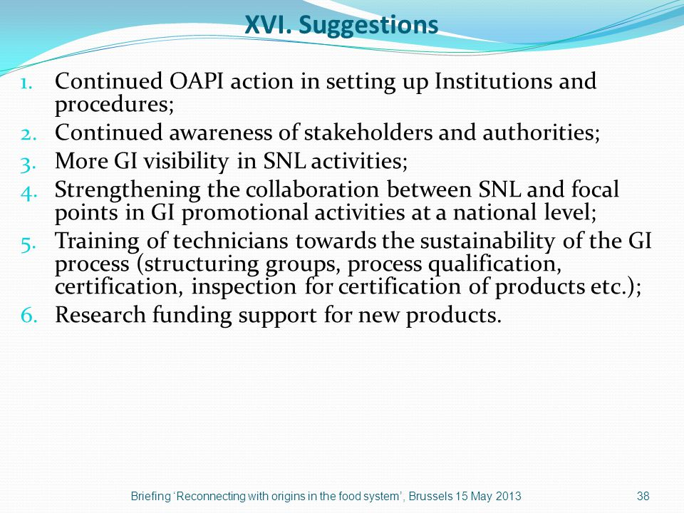 XVI. Suggestions 1. Continued OAPI action in setting up Institutions and procedures; 2.