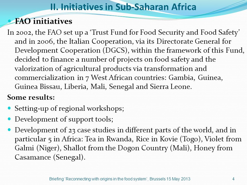 II. Initiatives in Sub-Saharan Africa FAO initiatives In 2002, the FAO set up a 'Trust Fund for Food Security and Food Safety' and in 2006, the Italia
