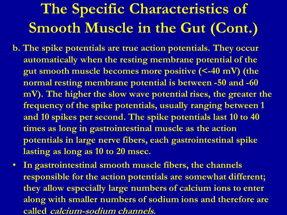 The Specific Characteristics of Smooth Muscle in the Gut (Cont.) b. The spike potentials are true action potentials. They occur automatically when the