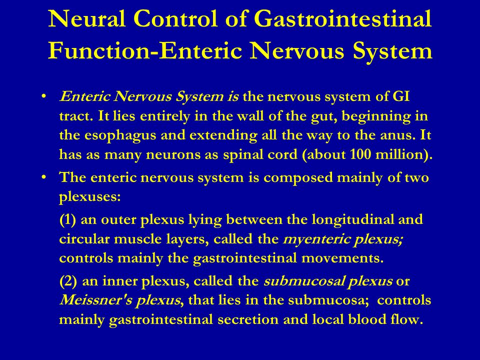 Enteric Nervous System is the nervous system of GI tract. It lies entirely in the wall of the gut, beginning in the esophagus and extending all the wa