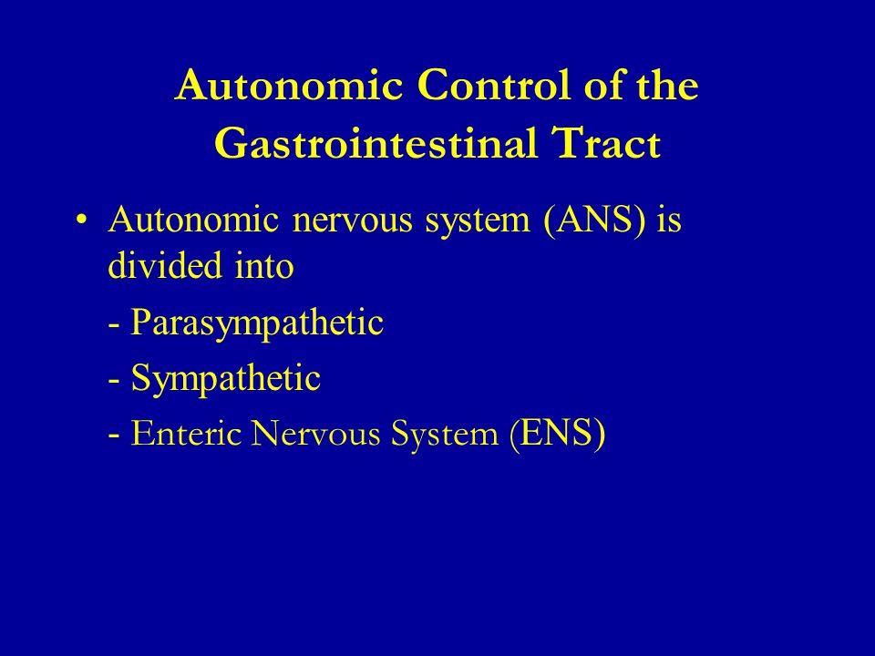 Autonomic Control of the Gastrointestinal Tract Autonomic nervous system (ANS) is divided into - Parasympathetic - Sympathetic - Enteric Nervous System ( ENS)