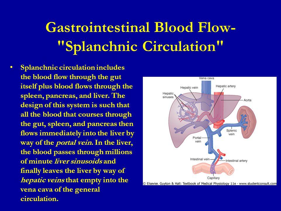 Gastrointestinal Blood Flow-