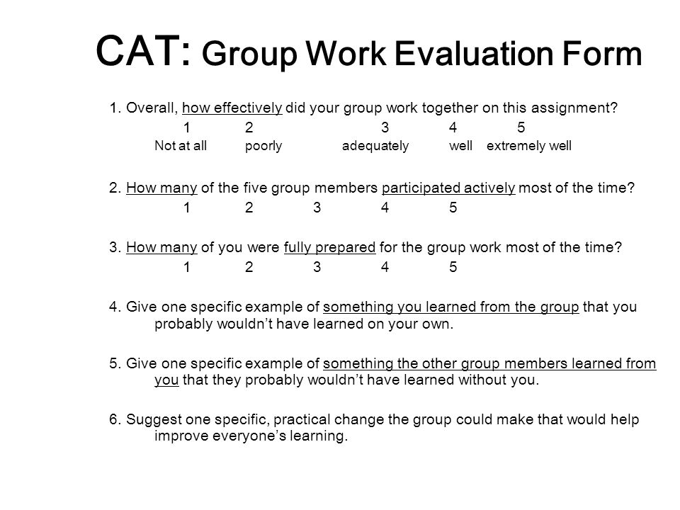 CAT: Group Work Evaluation Form 1.