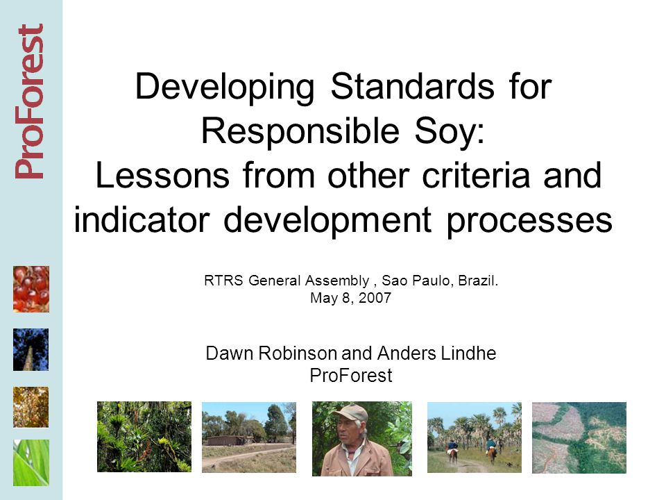 RTRS Objective: a forum for developing and promoting principles, criteria, indicators, and verification tools for responsible soy production, processing and trading Responsible soy is economically viable, socially beneficial, and environmentally appropriate (RTRS statutes, Nov 2006) Lessons can be learned from other, similar initiatives.