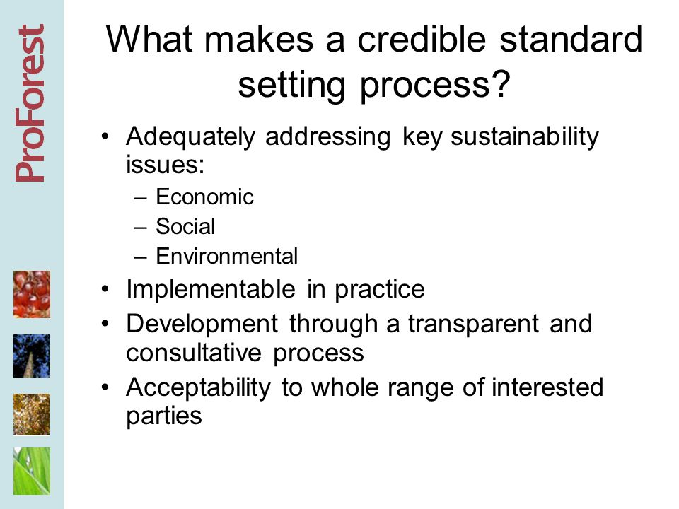 Developing the standards or criteria -First step in achieving credibility -Foundation of any future verification system