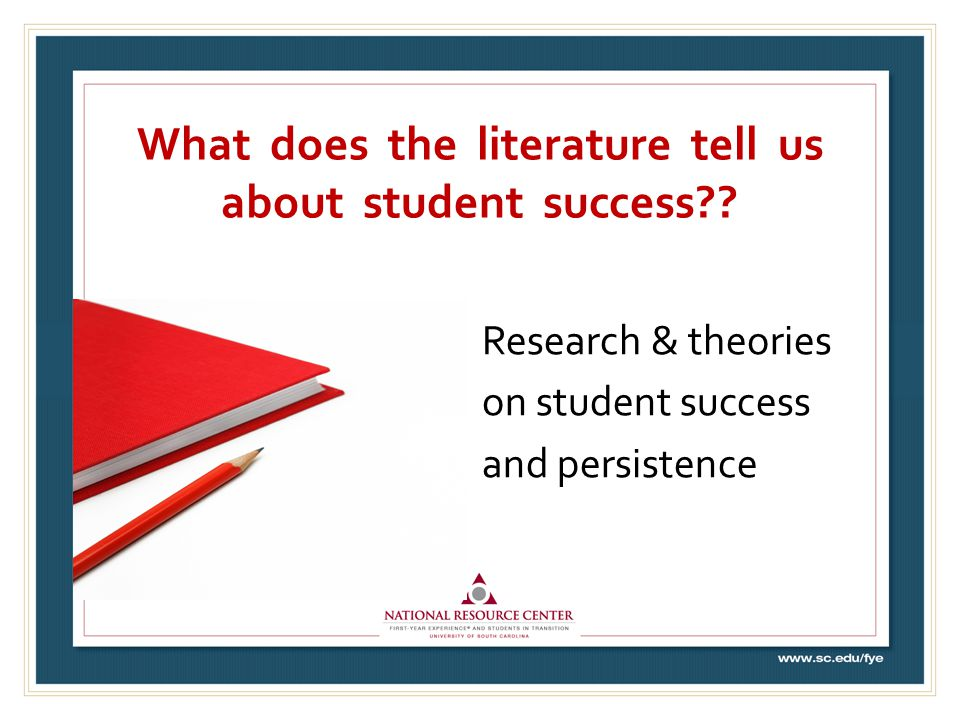 What does the literature tell us about student success .