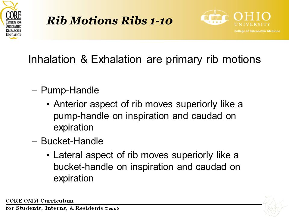 Rib Motions Ribs 1-10 Inhalation & Exhalation are primary rib motions –Pump-Handle Anterior aspect of rib moves superiorly like a pump-handle on inspi