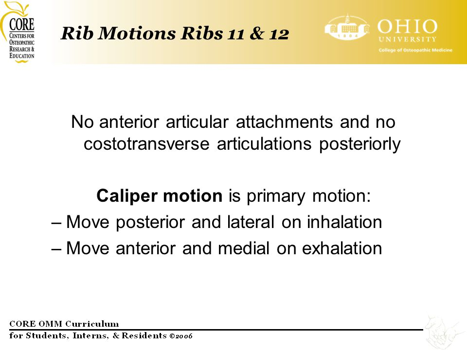 Rib Motions Ribs 11 & 12 No anterior articular attachments and no costotransverse articulations posteriorly Caliper motion is primary motion: –Move po