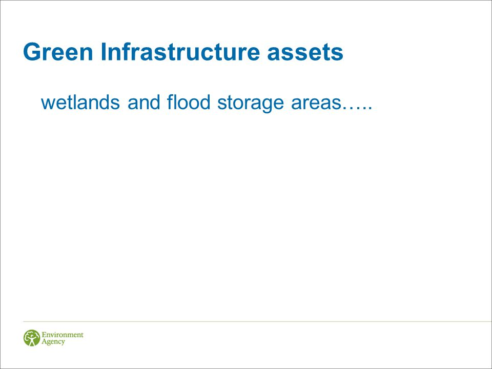 Green Infrastructure assets wetlands and flood storage areas…..
