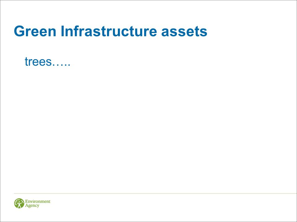 Green Infrastructure assets trees…..
