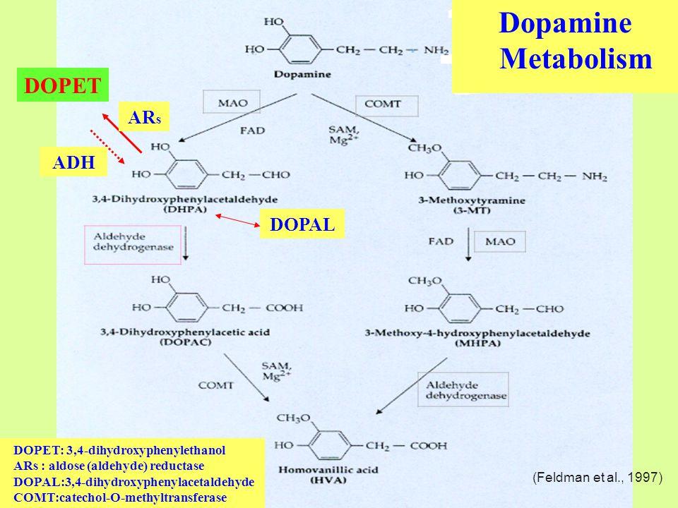 Dopamine Metabolism AR s ADH DOPET DOPET: 3,4-dihydroxyphenylethanol ARs : aldose (aldehyde) reductase DOPAL:3,4-dihydroxyphenylacetaldehyde COMT:catechol-O-methyltransferase DOPAL (Feldman et al., 1997)