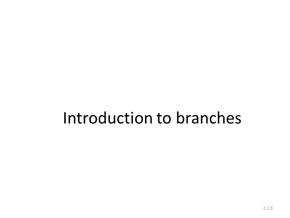 Introduction to branches 2.2.8