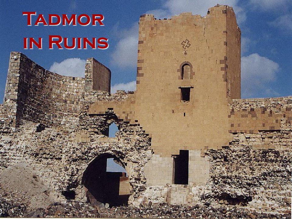 Tadmor in Ruins
