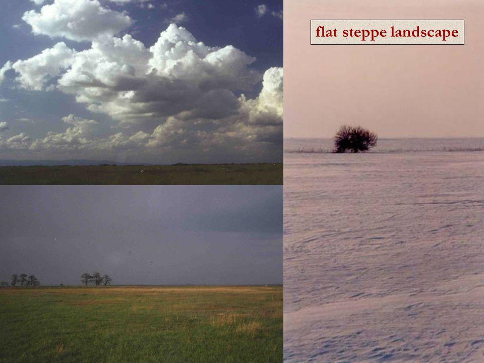 flat steppe landscape
