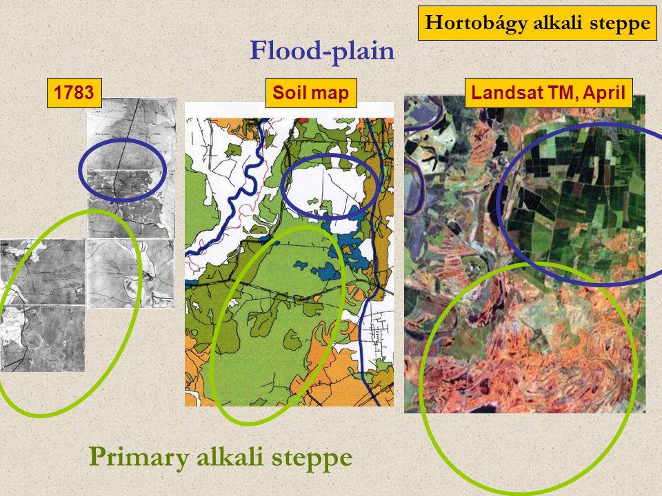 Flood-plain Primary alkali steppe 1783 Soil mapLandsat TM, April Hortobágy alkali steppe
