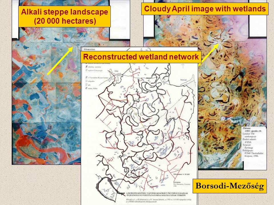Alkali steppe landscape ( hectares) Cloudy April image with wetlands Reconstructed wetland network Borsodi-Mezőség