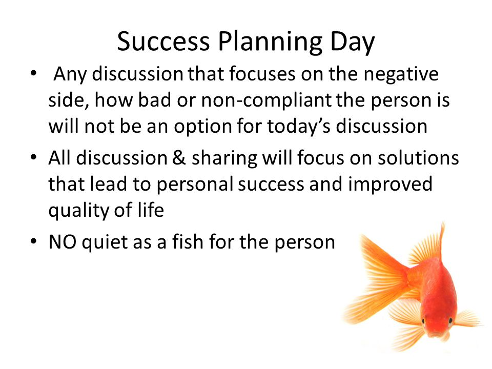 Success Planning Day Any discussion that focuses on the negative side, how bad or non-compliant the person is will not be an option for today's discussion All discussion & sharing will focus on solutions that lead to personal success and improved quality of life NO quiet as a fish for the person