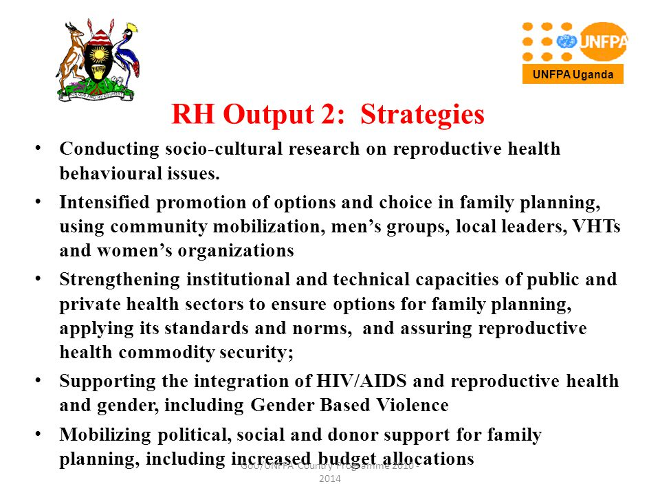RH Output 2: Strategies Conducting socio-cultural research on reproductive health behavioural issues.