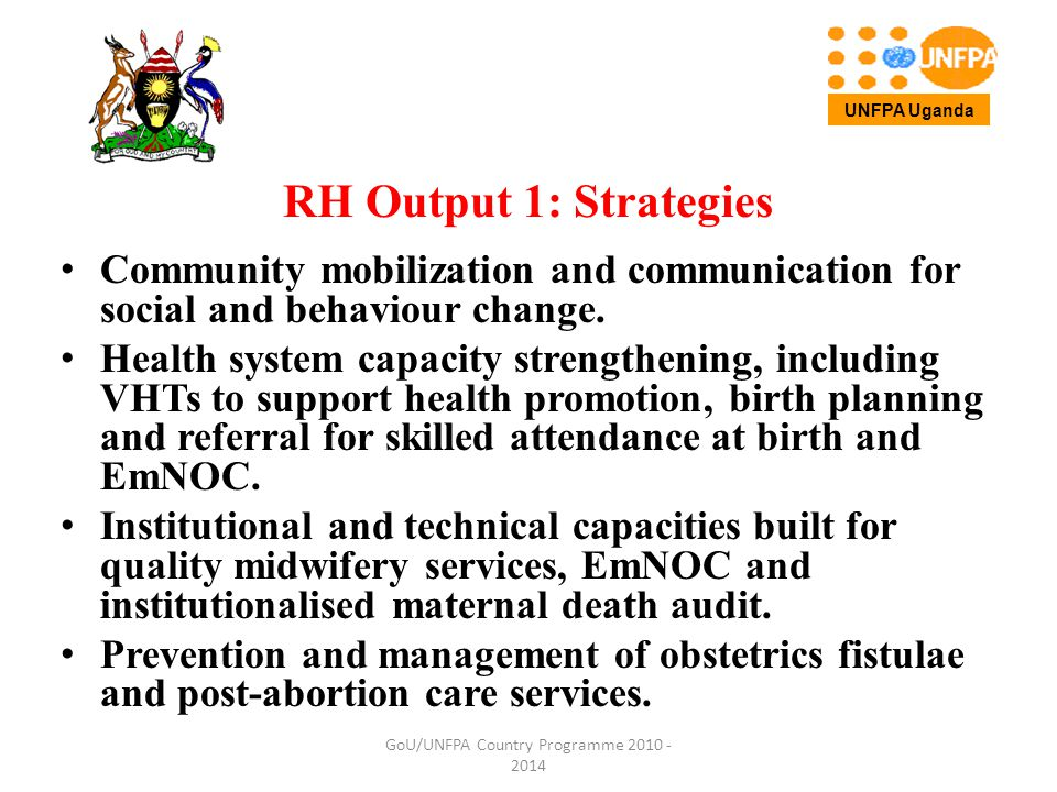 RH Output 1: Strategies Community mobilization and communication for social and behaviour change.