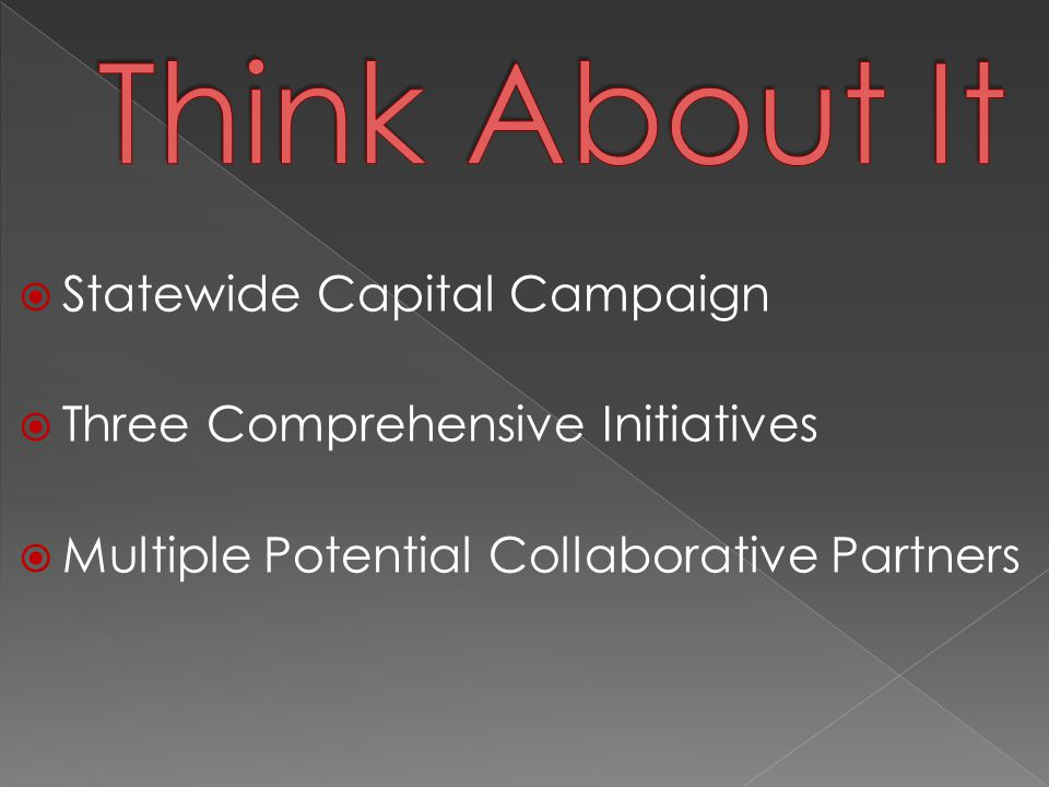 Statewide Capital Campaign  Three Comprehensive Initiatives  Multiple Potential Collaborative Partners