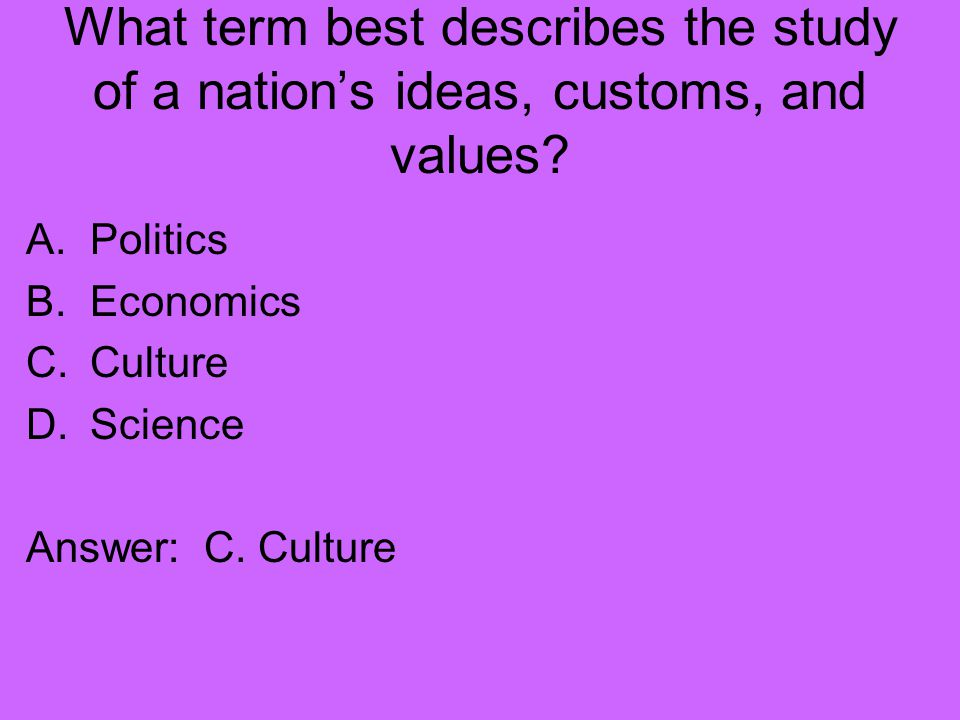 What term best describes the study of a nation's ideas, customs, and values.