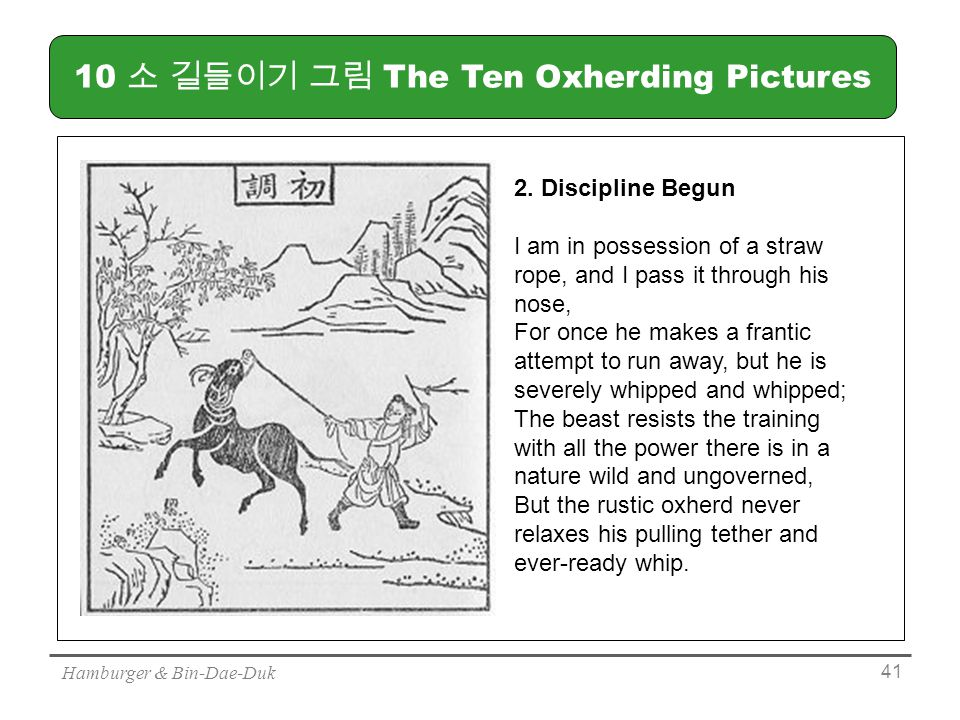 Hamburger & Bin-Dae-Duk 소 길들이기 그림 The Ten Oxherding Pictures 2.