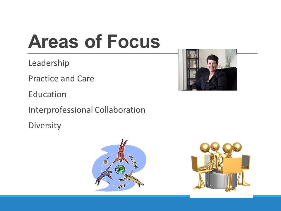 Areas of Focus Leadership Practice and Care Education Interprofessional Collaboration Diversity