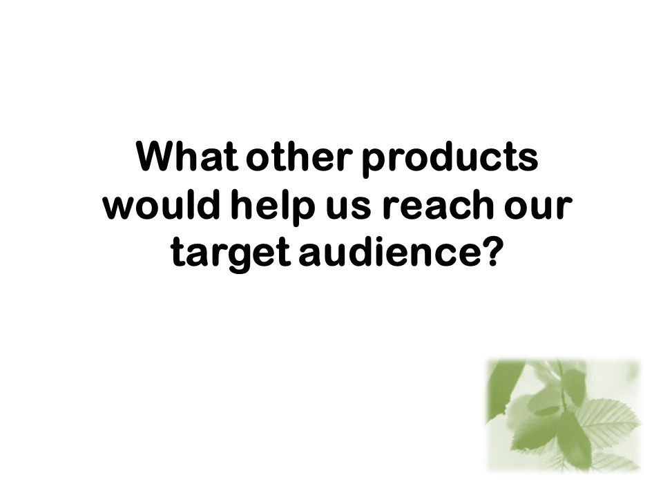 What other products would help us reach our target audience?