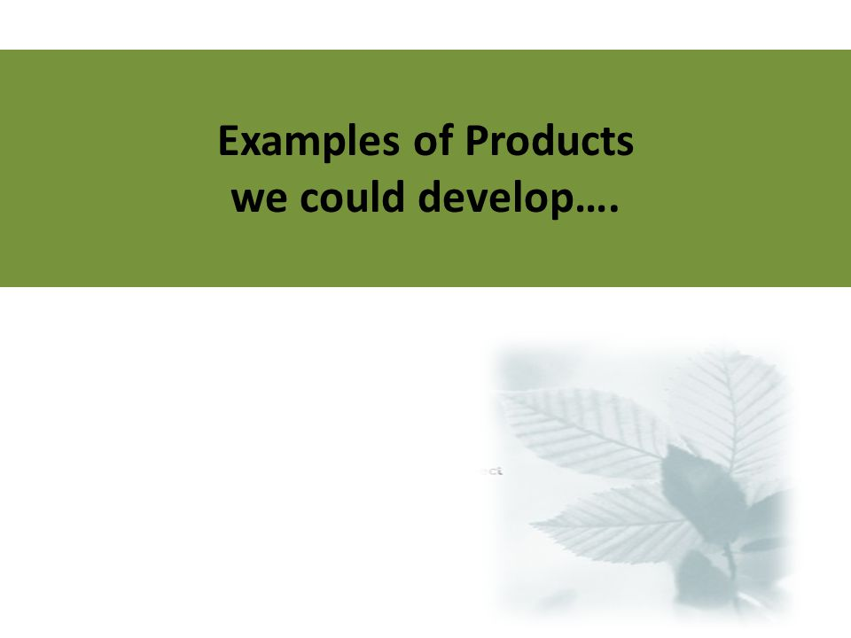 Examples of Products we could develop….