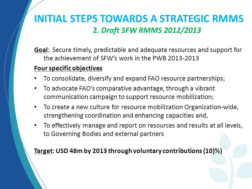 INITIAL STEPS TOWARDS A STRATEGIC RMMS 2.
