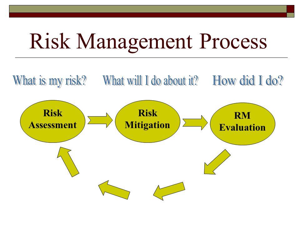 Risk Management Process Risk Assessment Risk Mitigation RM Evaluation