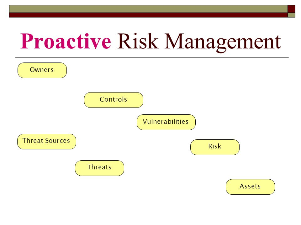 Owners Controls Threat Sources Vulnerabilities Risk Assets Threats Proactive Risk Management