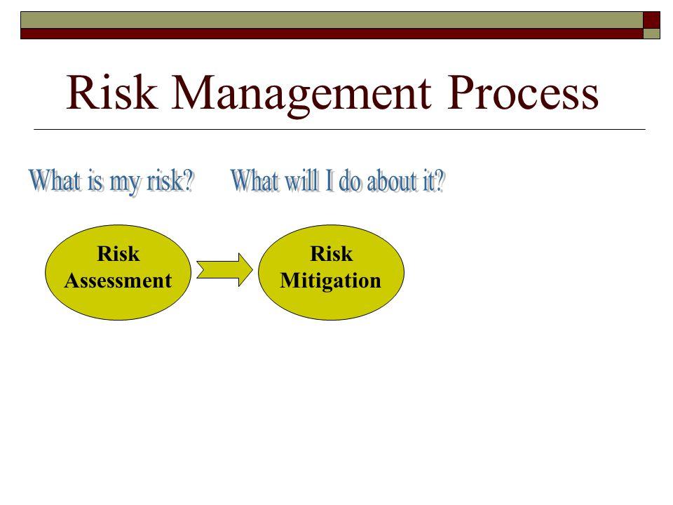 Risk Management Process Risk Assessment Risk Mitigation