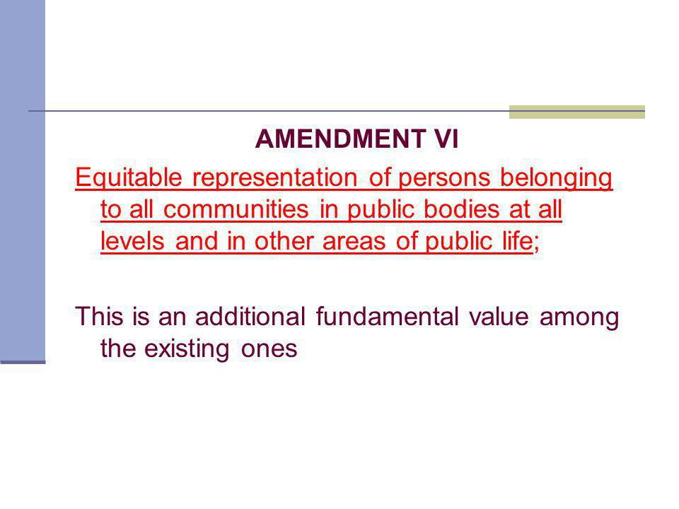 AMENDMENT VI Equitable representation of persons belonging to all communities in public bodies at all levels and in other areas of public life; This is an additional fundamental value among the existing ones