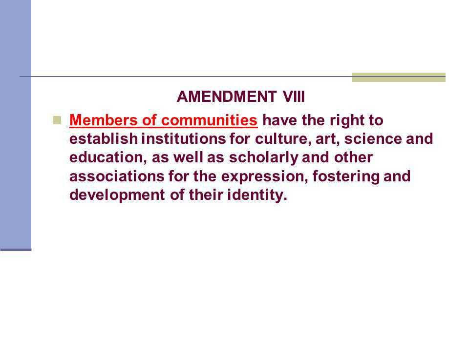 AMENDMENT VIII Members of communities have the right to establish institutions for culture, art, science and education, as well as scholarly and other associations for the expression, fostering and development of their identity.