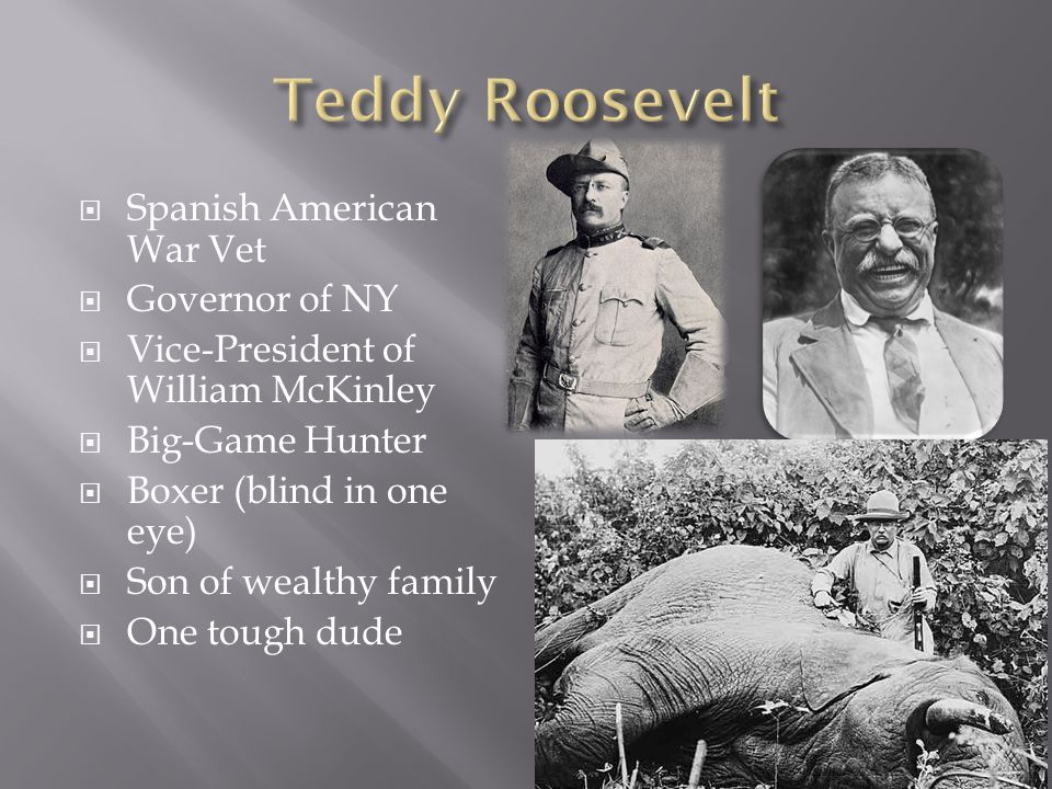  Spanish American War Vet  Governor of NY  Vice-President of William McKinley  Big-Game Hunter  Boxer (blind in one eye)  Son of wealthy family  One tough dude