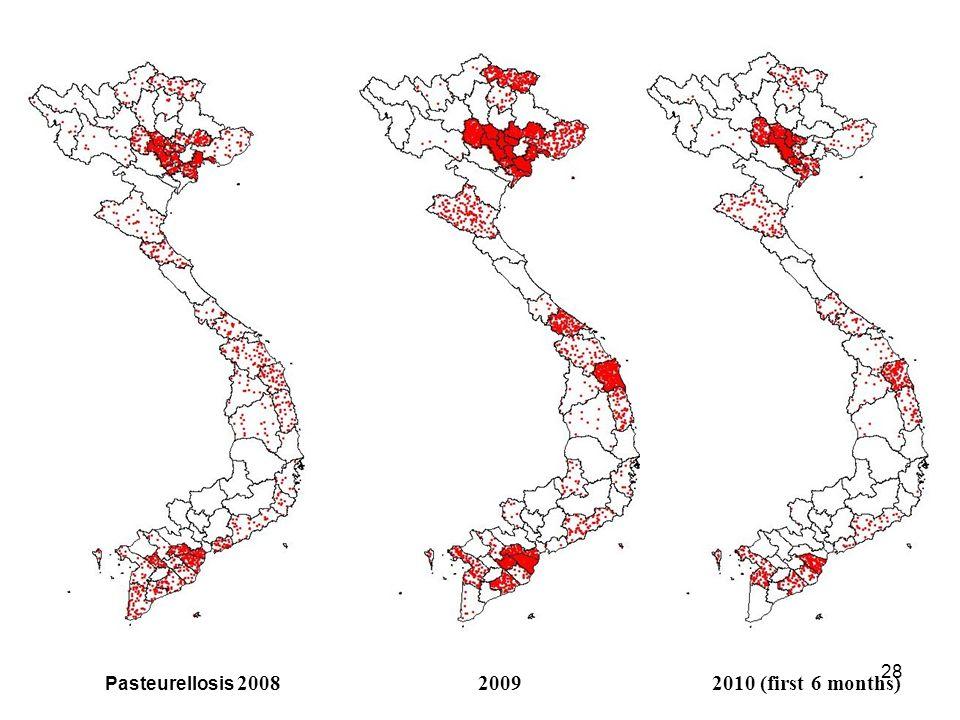 27 Pasteurellosis 200520062007