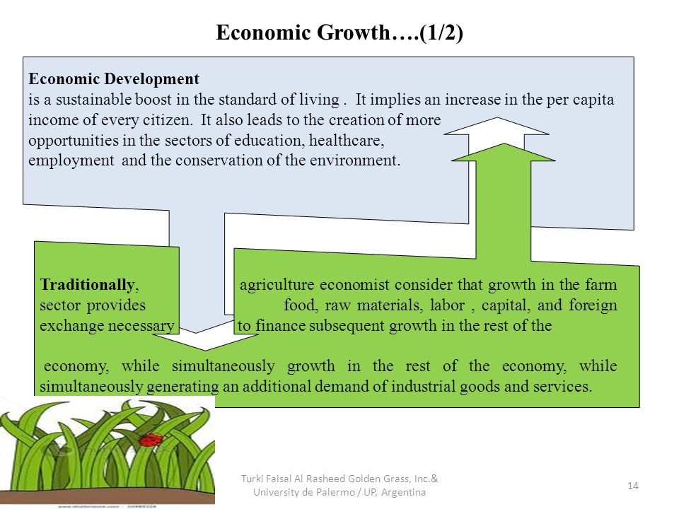 Economic Growth….(1/2) Turki Faisal Al Rasheed Golden Grass, Inc.& University de Palermo / UP, Argentina 14 Economic Development is a sustainable boost in the standard of living.