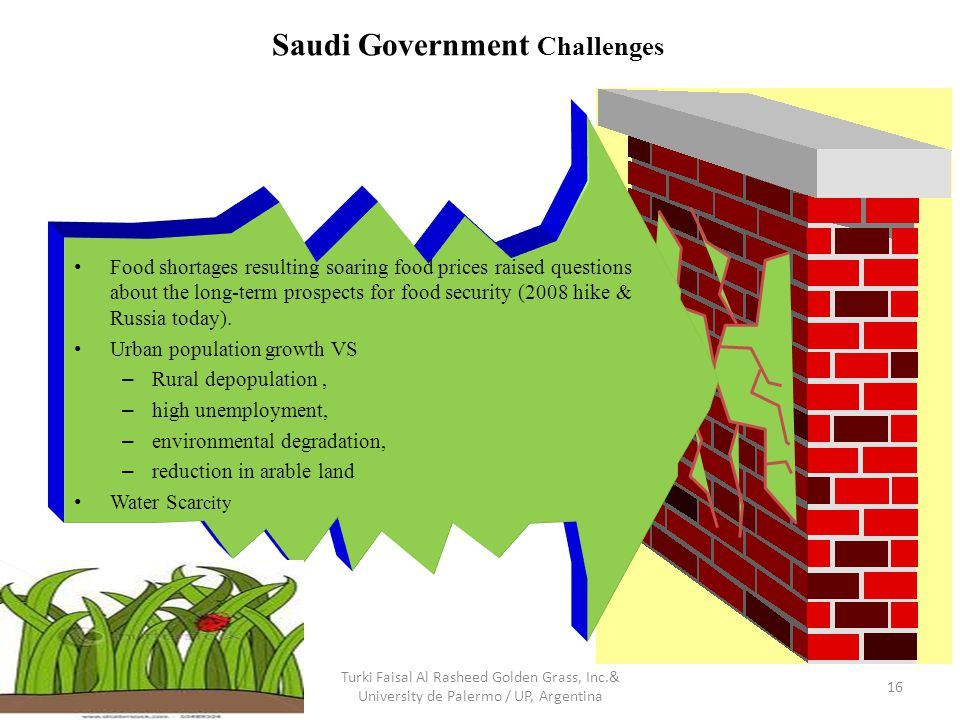Saudi Government Challenges 16 Turki Faisal Al Rasheed Golden Grass, Inc.& University de Palermo / UP, Argentina Food shortages resulting soaring food prices raised questions about the long-term prospects for food security (2008 hike & Russia today).