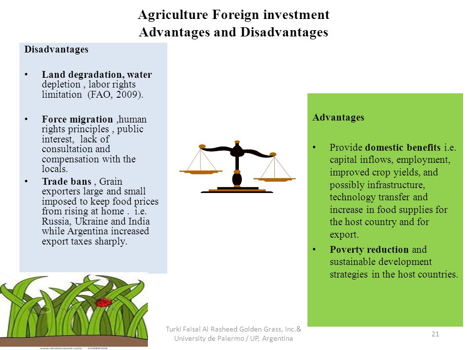 Agriculture Foreign investment Advantages and Disadvantages Turki Faisal Al Rasheed Golden Grass, Inc.& University de Palermo / UP, Argentina 21 Advantages Provide domestic benefits i.e.